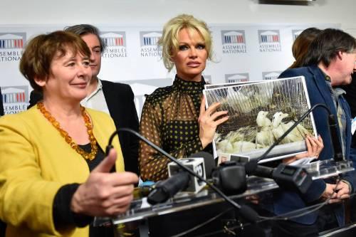 Pamela Anderson contro il foie gras 12
