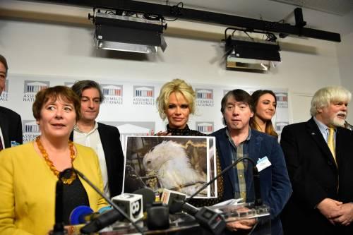 Pamela Anderson contro il foie gras 21