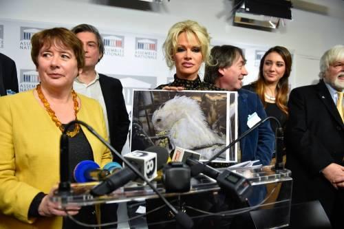 Pamela Anderson contro il foie gras 22
