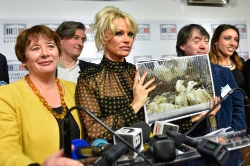 Pamela Anderson contro il foie gras 23