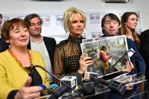 Pamela Anderson contro il foie gras 25