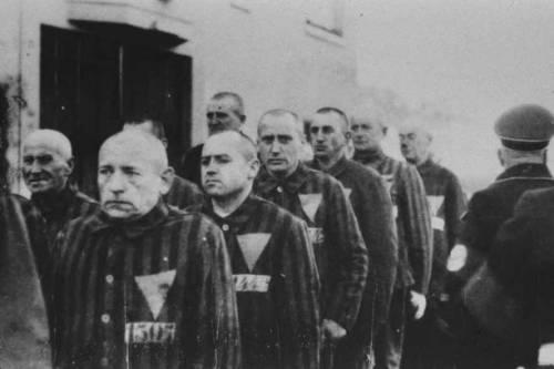 Film sull'Olocausto, foto 39