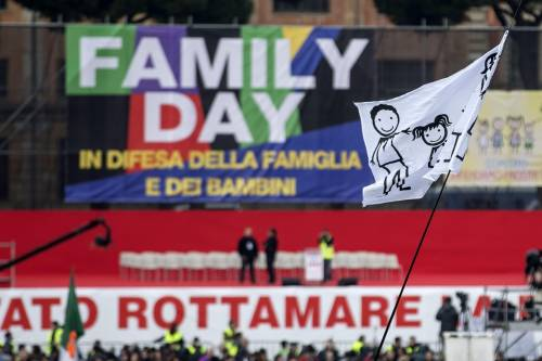 I manifestanti al Family Day 8