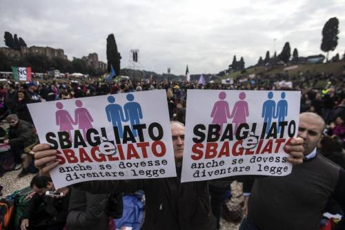 I manifestanti al Family Day 6