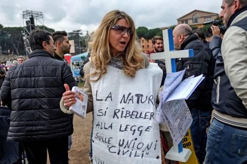 I manifestanti al Family Day 19