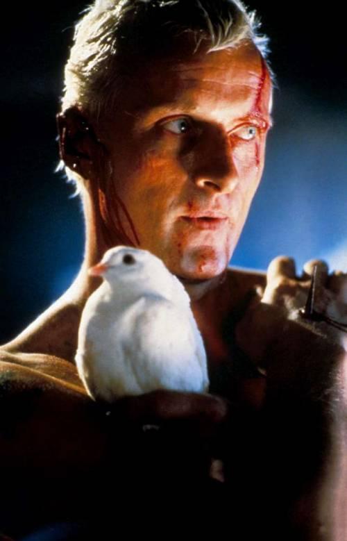 Blade Runner avrà un seguito 1