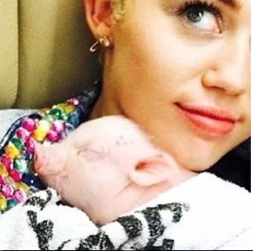 Miley Cyrus, basta con le provocazioni: foto 5