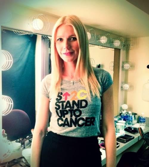 La vita da blogger di Gwyneth Paltrow 6