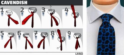 I 17 nodi per la cravatta 13