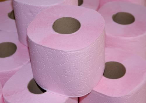 Gli americani usano troppa carta igienica: in pericolo le foreste canadesi