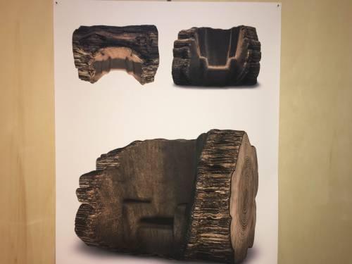 L'albero che diventa sedia 3
