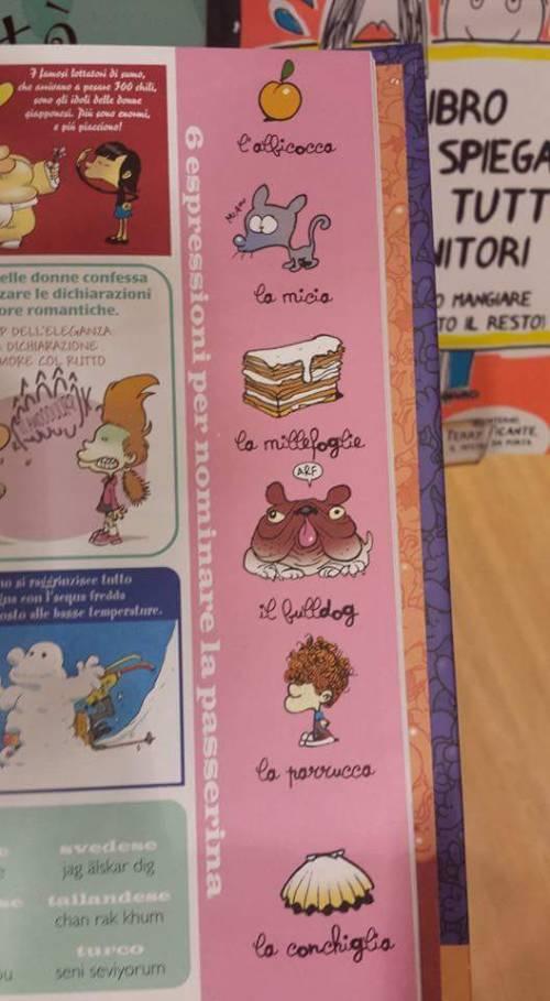 """Il libro choc per bimbi: """"Metti il dito nel buco della donna"""" 5"""