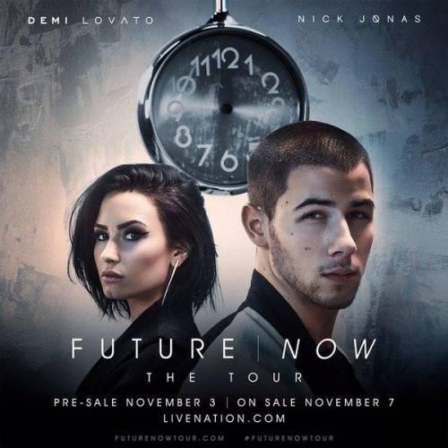 Demi Lovato e Nick Jonas: foto 8