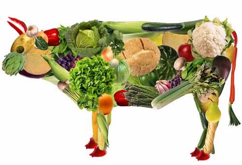 """""""I vegetariani non esistono"""": la dimostrazione dell'esperto in 3 punti"""