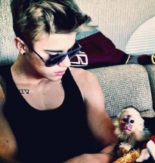 Justin Bieber fa arrabbiare la PETA 2