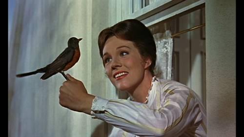 Julie Andrews, la filmografia in foto 5