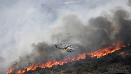"""Incendi in Sicilia appiccati da gatti bruciati"": accusa ai piromani"
