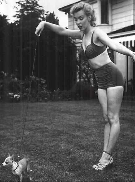 Auguri, bikini: il costume più famoso al mondo compie 70 anni 3