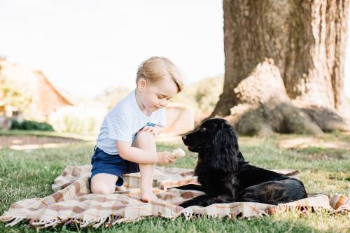 Il principe George compie 3 anni: le nuove foto da Kensington Palace 2