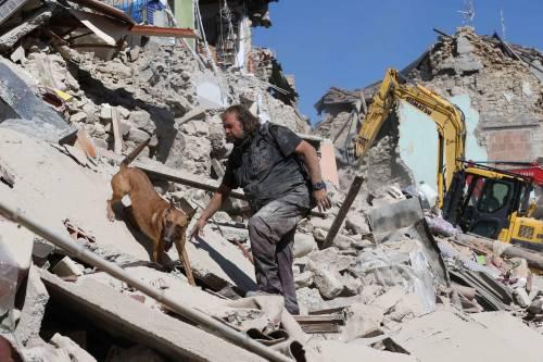 Lady Gaga per il terremoto: foto 5