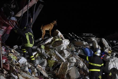 Lady Gaga per il terremoto: foto 19