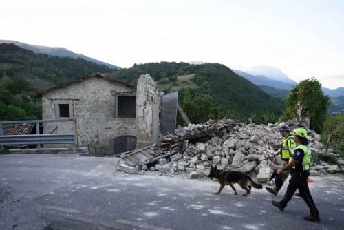 Lady Gaga per il terremoto: foto 37