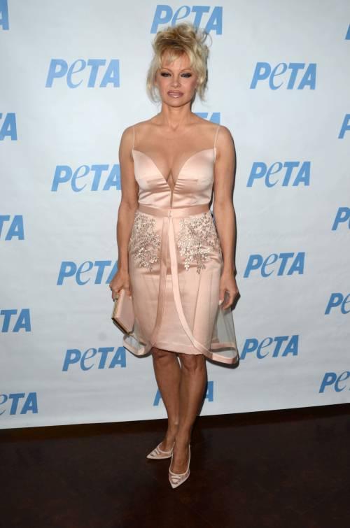 Pamela Anderson, la più sexy ieri e oggi 7