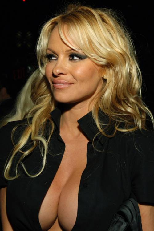 Pamela Anderson: le foto della bionda tutta curve 7