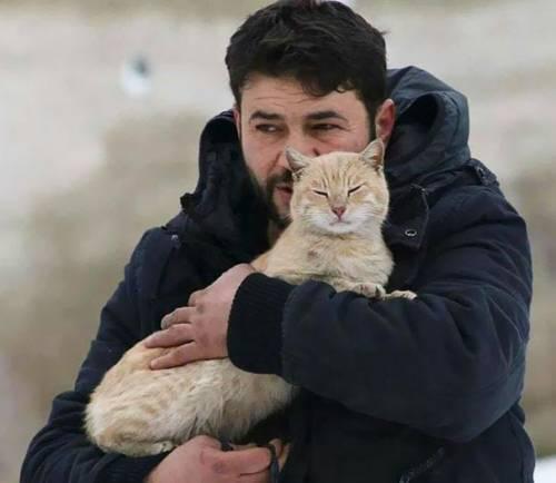L'elettricista di Aleppo che salva i gatti dalla guerra