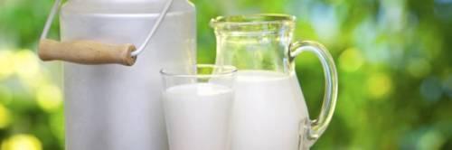 Latte, obbligo etichetta con origine della materia prima