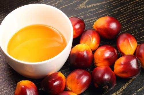 La Russia importa olio di palma per rimpiazzare il latte europeo