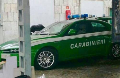 La rivoluzione nei carabinieri: ecco le auto verdi per i forestali