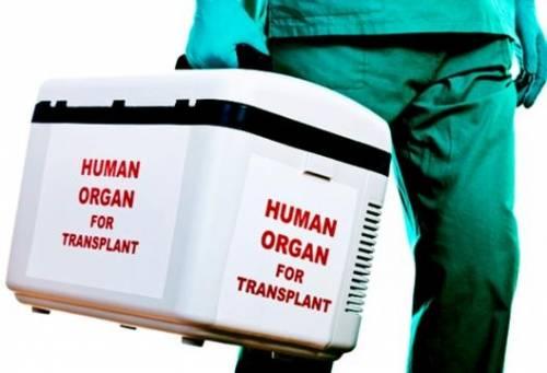 I trafficanti di organi ora rischiano fino a 12 anni di carcere