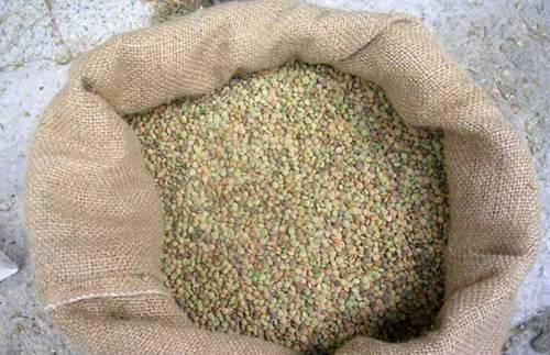 Le lenticchie di Castelluccio di Norcia IGP: regine delle nostre tavole natalizie