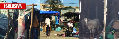 Il campo profughi di Rosarno un macello pagato dallo Stato