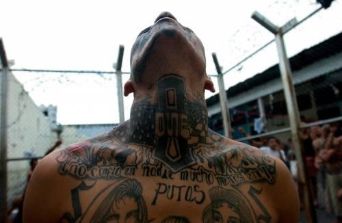 Rapine, spaccio e coltellate. La legge delle gang a Milano