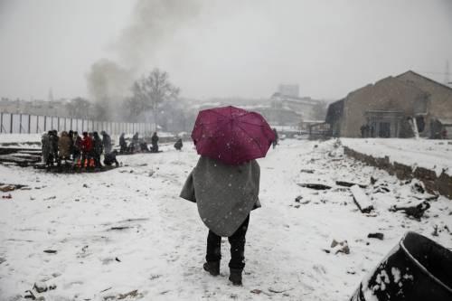 Migranti in fila nella neve a Belgrado 5
