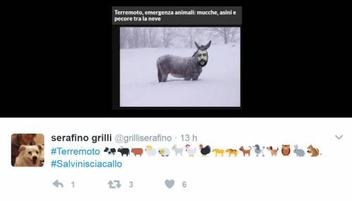 Abruzzo, gli attacchi a Salvini su Twitter 3