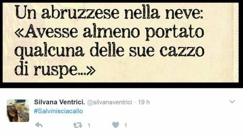 Abruzzo, gli attacchi a Salvini su Twitter 2
