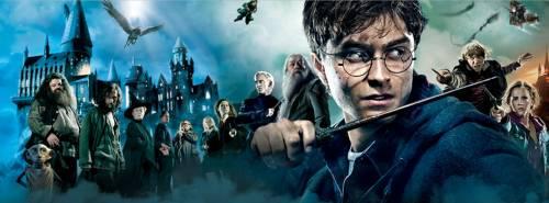 """Harry Potter compie 20 anni: Facebook festeggia con una """"magica"""" animazione"""