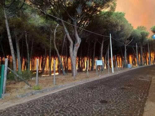 Gli incendi divampano sul Vesuvio 2