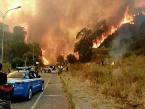 Gli incendi divampano sul Vesuvio 6
