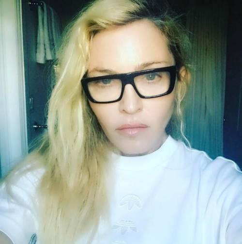 Madonna e Sharon Stone: sexy dive a confronto 15