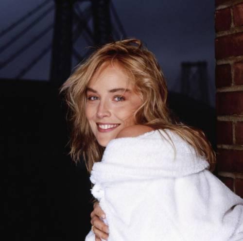 Madonna e Sharon Stone: sexy dive a confronto 23