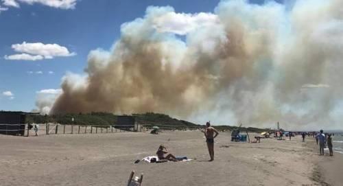Fiamme fanno evacuare la spiaggia a Capalbio 4