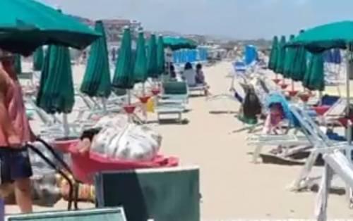 Pacchi di marijuana sulle spiagge abruzzesi 5