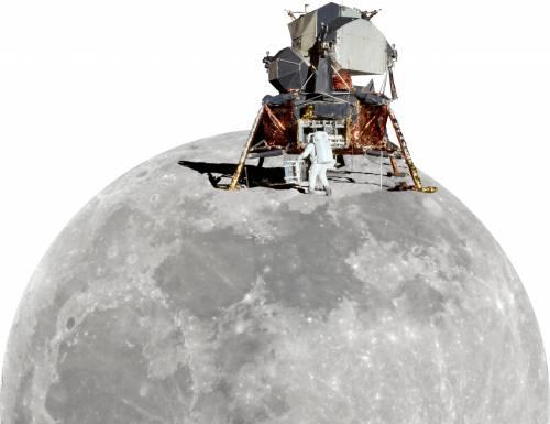 Per la borsa che porta la Luna, i prezzi sono volati alla stelle