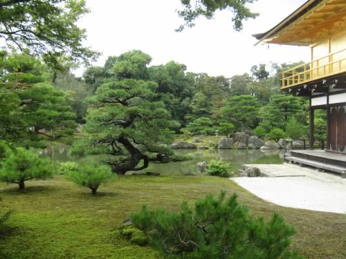 Dalla Terra al Cielo, il Padiglione d'Oro a Kyoto 2