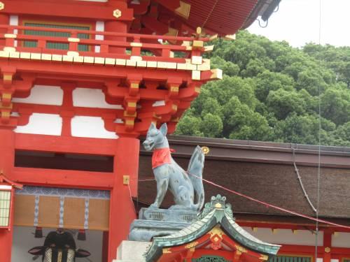 Le mille porte di Fushimi Inari, dove vive lo spirito della volpe 4