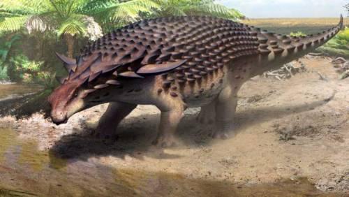 """La """"Monna Lisa"""" dei dinosauri scoperta in una miniera del Canada"""